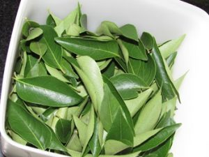 Benefits Curry Leaves