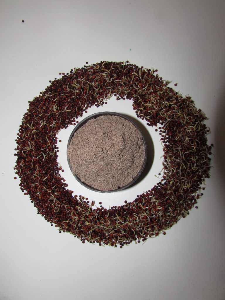 Sprouted Ragi